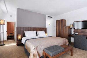 gallery-grand-hotel-ter-duin-deluxe-kamer-met-sauna