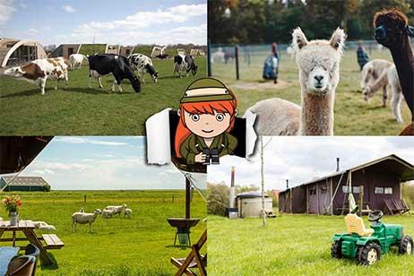 5x de leukste boerderijvakanties in Nederland!