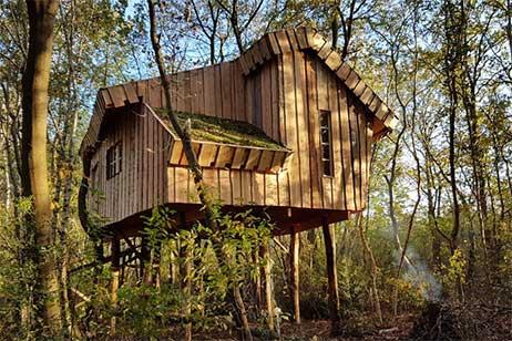 Boomhut XXL op Camping de Reeenwissel in Drenthe - Boomhut Overnachting