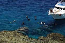 Duik bij Duikresort Reef Oasis Blue Bay Resort & Spa- Hotel met Huisrif en duikschool in Egypte