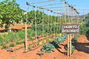 Agroturismo Sa Marina - Adults only agroturismo Ibiza